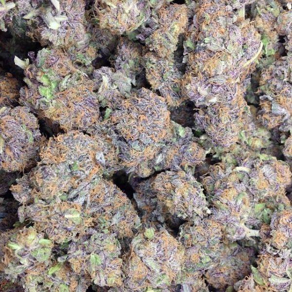 Purple urkle weed strain UK