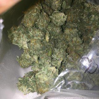 Buy Jack Herer weed UK