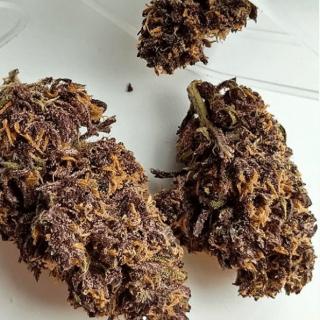 Buy Forbidden fruit weed UK