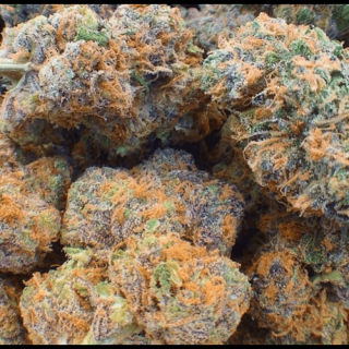 Fruity pebble strain UK