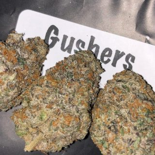 Buy Fruit Gusher weed UK