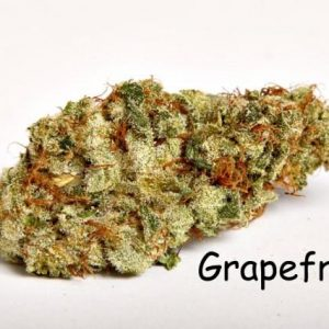 Grapefruit sativa weed uk