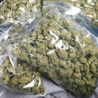 Buy Cinex Weed UK