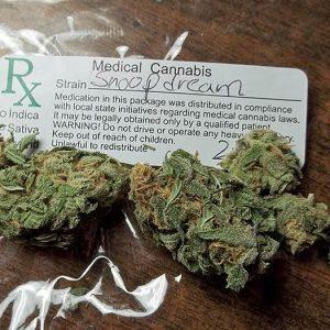 Snoop's Dream Weed Strain UK