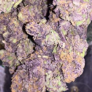 Buy Purple Haze weed UK