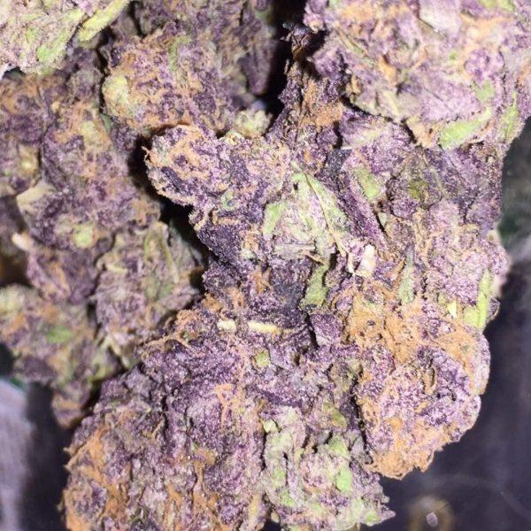 Buy Purple Haze weed UK