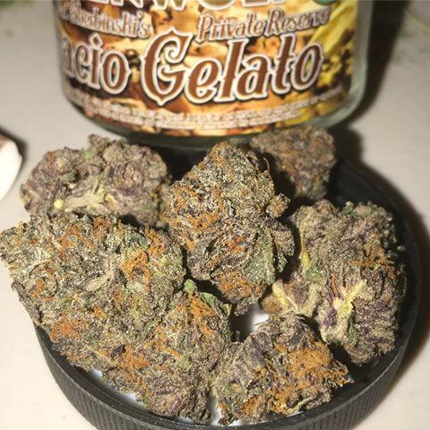 Gelato Weed Strain UK
