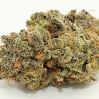 Mendocino purps strain UK