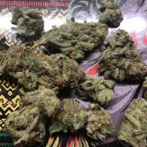 Buy Dirty Girl Weed UK