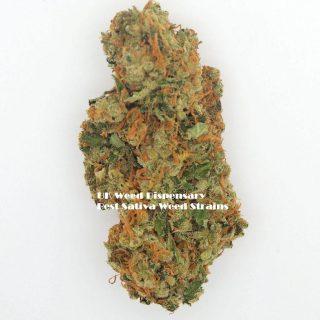 Sativa Weed Strains Online UK