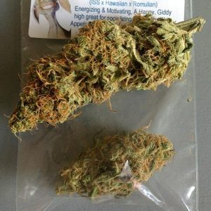 Golden goat weed strain UK