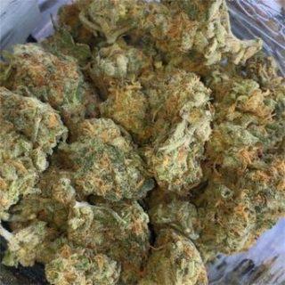 LA Confidential Weed Strain
