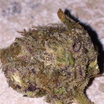 Buy Romulan Weed Strain UK