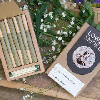 Lowell Smokes Prerolled Marijuana