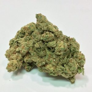 Buy banana Sorbet Strain UK