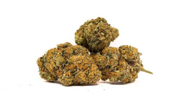 King Tut Marijuana Strains UK