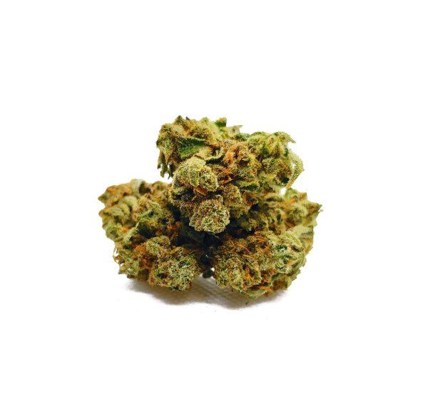 Wild Zombie Marijuana Strain UK