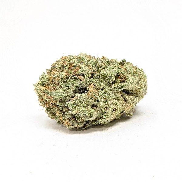 White Gushers Marijuana Strain UK